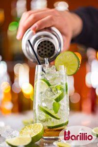 The Barillio Elite Cocktail Shaker & Bartender Kit